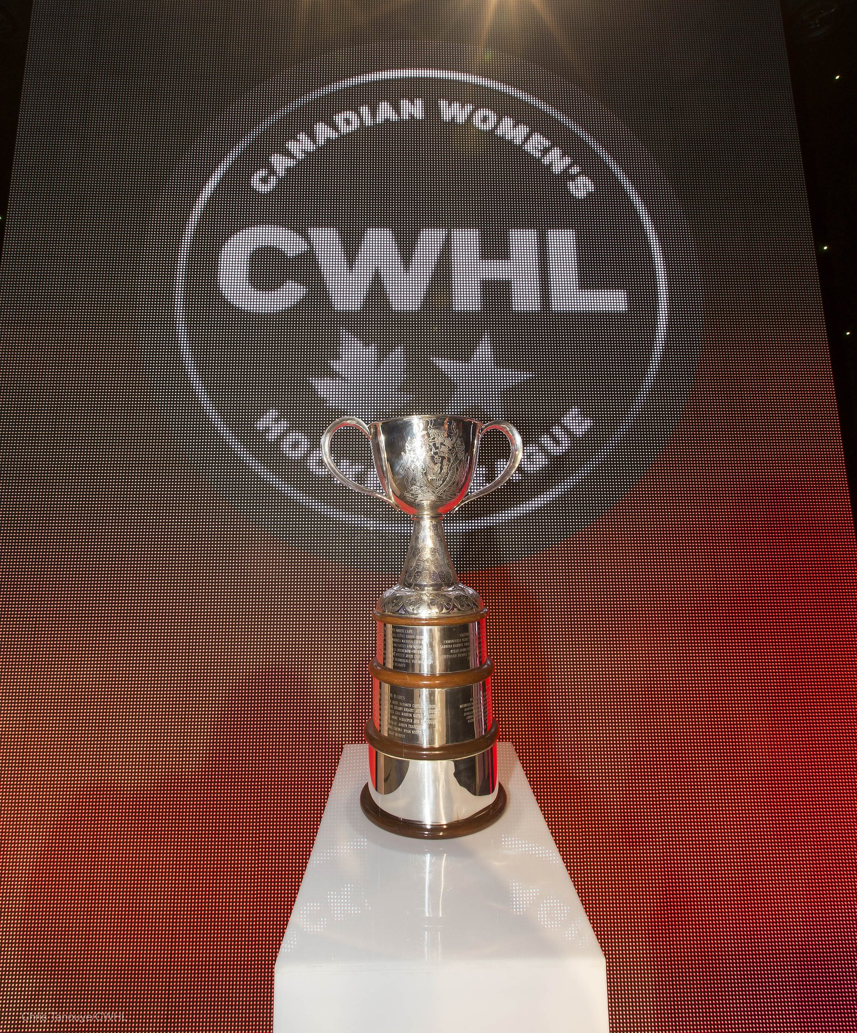 CWHL Midseason Thoughts: Road to the Clarkson Cup
