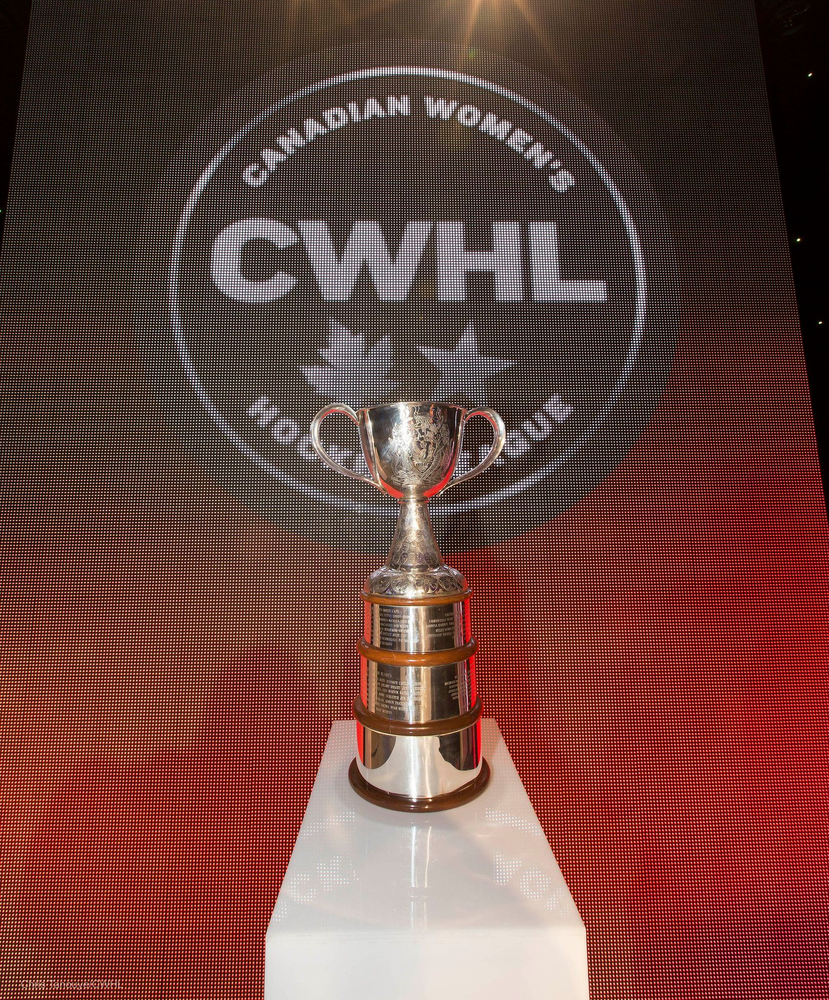 CWHL: Board of Directors Shutters League, Literally Everyone Reacts